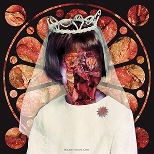 Digital Meat Collage by Howard Forbes, Album Cover Artwork for FIRE IN THE HEAD